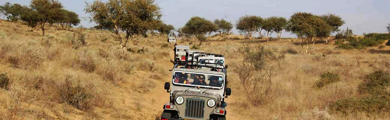 Jodhpur_jeep_safari